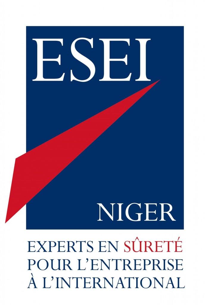Logo ESEI Niger HD